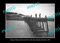 OLD LARGE HISTORIC PHOTO PENNESHAW KANGAROO ISLAND THE HOG BAY JETTY c1907