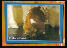 """THE OSBOURNES FAMILY (Inkworks/2002) """"LOLA THE DOG"""" CASE LOADER CARD #CL1"""