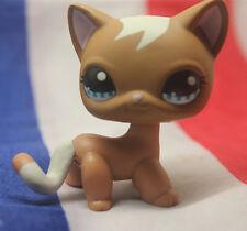 Littlest Pet shop#1170 Short Hair Cat kitty Mocha Caramel Brown Swirl European