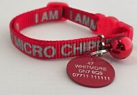 ANCOL Red chipped Cat Collar,KITTEN with  Engraved 25mm Pet ID NAME TAG