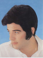 Elvis Lives Fashion Wig Halloween costume