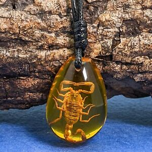 Real Scorpion In Amber Tone Resin Pendant On Black Pull Cord