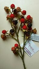 Artificial Fruit Black  & Red berries .25 berries on long stem.lifelike autumn