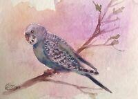 ACEO Bird Art Parakeet painting Parrot wildlife Animal original listed by artist