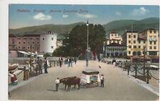 Madeira, Funchal, Avenida Gonsalves Zarco Postcard, B145