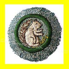 Mammal 1938 Intermediate Girl Scout Silver-Green Badge Cute Squirrel Combine Shp