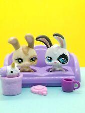 Authentic Littlest Pet Shop 2 Magic Motion Rabbits Bunny  & ACCESSORIES LPS