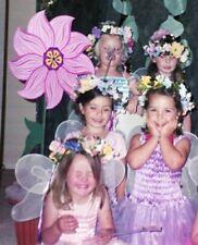 Enchanted Fairyland Fairy Dress Up Springtime Tulle Skirt Bodice Large 5/6