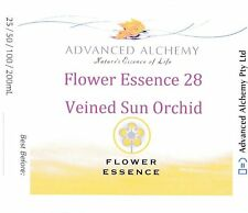 Flower Essence #28 Friendship - Advanced Alchemy 50ml Veined Sun Orchid