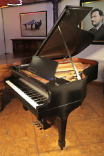 Steinway & Sons Pianos