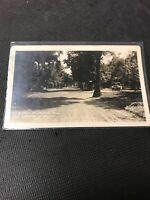 Postcard A Drive In The Island Park Portage La Prairie Manitoba 1923 Car C01