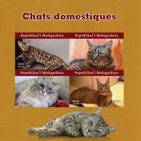 Madagascar Cats Stamps 2020 MNH Cat Domestic Animals Pets 4v IMPF M/S