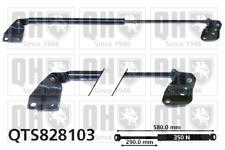 Suzuki Alto Hatchback 2004 - 2008 Gas Spring Boot Strut QH QTS828103