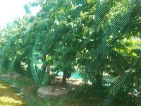 Vogelschutznetz 4 x 5 m Laubschutznetz Gartennetz Teichnetz Obstbaumnetz 4x5m