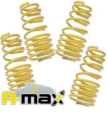 A-MAX Peugeot 106 1.0 1.1 1.3 1.4 1.6 1.5D 1996-2003 30mm Lowering Springs