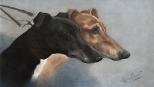 "Lilian Cheviot, Slips for the Waterloo Cup, Greyhound Dogs, 24""x14"" CANVAS ART"