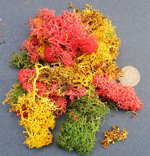 Mixed Colour Reindeer Moss Dolls House Garden Foliage Lichen Accessory Ja