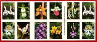 2020 US Stamps SC#5435-44 Wild Orchids Booklet pane of 20
