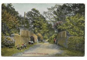 Haywards Heath - Ashenground Bridge - Pre-1914 Postcard 314D