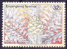 United Nations 1996 MNH, Endangered Species Plant Eastern Cape blue cycad -
