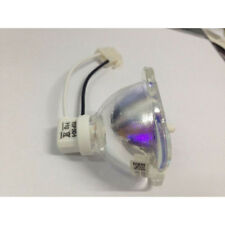 Replacement Projector Lamp For BenQ MS500 / MS500+ / MS500P / MX501 / TX501