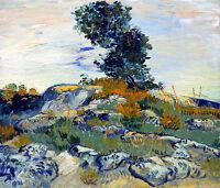 The Rocks by Vincent van Gogh 75cm x 64cm Canvas Print