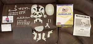 Skilcraft Anatomy Kit HumanLab Life-Size Human Skull No.4625 Glows,Stand,Movable