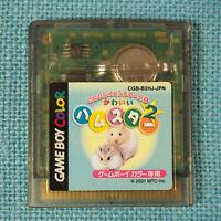 Kawaii Hamster 2 (Nintendo Game Boy Color GBC, 2001) Japan Import