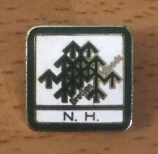 Vintage Enamel Bretton Woods New Hamphshire Ski Pin