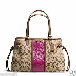 Coach Bag F29863 SIGNATURE STRIPE SNAKE DRAWSTRING CARRYALL CHERRY agsbeagle COD