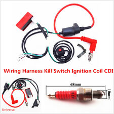 Dirt Pit Bike Wiring Loom Harness Kill Switch Ignition Coil CDI 50 110 140 150cc