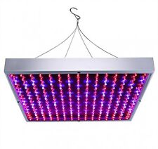 BLOOMWIN 14W Plant Growing Panel 225pcs LED Red Blue Hydroponic Growing Lights