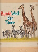 Originalzeichnung Sammelbilderalbum Wilhelm Eigener Bunte Welt der Tiere Aquarel