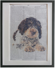 Lagotto Romagnolo Dog Wall Print No.447, exotic dog poster, dog lover gifts