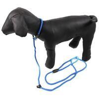 Cute Pet Dog Puppy Strong Nylon Rope Slip Training Leash Walking Lead Collar T