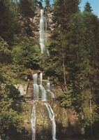 Romker Wasserfall im Oberharz ,Ansichtskarte