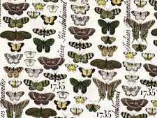 Stoff Baumwolle Patchwork Short and Stout Schmetterlinge creme braun grün 0,25m