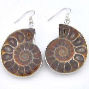 Vintage Silver Natural Ammonite Fossil Gems, Amethyst Gems Silver Hook Earrings