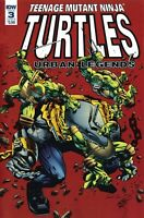 Teenage Mutant Ninja Turtles Urban Legends #3 Variant TMNT IDW 1st Print 2018 NM