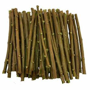 Neem Chew Sticks 10 PC / 1 Pack For Healthy Teeth And Gums
