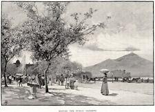 NAPOLI: Villa Comunale,via Caracciolo,Castel dell'Ovo,Vesuvio.Grande Veduta.1880