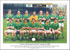 Meath All-Ireland Senior Football Champions 1988: GAA Print