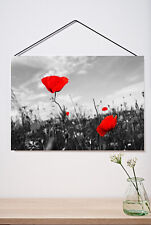 BLACK WHITE RED POPPY FIELD  MODERN PRINT PICTURE POSTER WALL ART