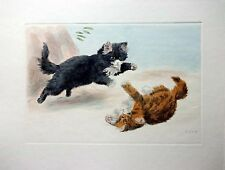 Kittens Playing - Hand Colored (Restrike Etching) by Harry Dixon - 2 Kittens