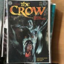 The Crow: Waking Nightmares #1 - Hester Kim Golden Crow Album On Back (1997)