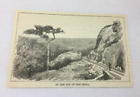1885 magazine engraving ~ AT THE TOP OF THE SERRA ~ Brazil
