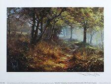 "David dipnall ""estaciones-otoño"" Woodland firmado Ltd Ed Tamaño: 26cm X 35cm Nuevo"