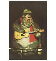 Disneyland Vintage Unused Postcard Country Bear Jamboree Big Al circa 1970s