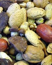 Higgins parrot boca nuts treats Macaws Mixed Nuts in Shell Pecans Almond Brazil