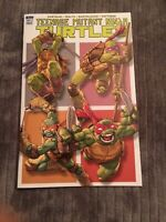 TMNT TEENAGE MUTANT NINJA TURTLES DAY SAMPLER #1 Rare High Grade [IDW, 2017]